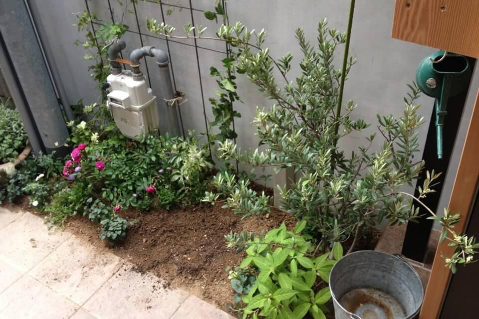ガスメーターや水道をカバーした植栽(1期)