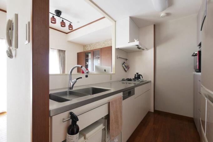 引き出しが2段(内部に内引出)の外観がシンプルなキッチンです